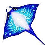 Mint's Colorful Life Cometa de pez diablo para niños y adultos (azul)