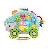 Fisher-Price – Juguete Educativo con Luces, Sonidos y música para estimular al bebé, a Partir de 9 Meses, GJB09