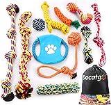 Docatgo Grupo de Juguetes para Perros Durable Masticable Cuerda Soledad Grupo de Juguete para Perrito Pequeño Medio Solitario para Mantener a su Perro Sano 11 Piezas