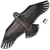 Sun Kites Gran Cometa De águila Negra para Niños y Adultos - Gran envergadura y diseño Realista - Muy fácil de Volar - Se ve excelente en el Cielo