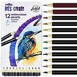 Juego de 12 lápices de dibujo profesionales, 10 lápices de color y 2 lápices de grafito (HB+2B) para adultos, niños, artistas y principiantes con caja de lata