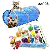 PietyPet Juguetes para Gatos, 20 Piezas Juguetes Gatos, Juguete Interactivo para Gatos Kitty