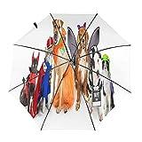 Mascotas Disfraces de Halloween Travel Paraguas plegable portátil compacto ligero diseño automático y alta resistencia al viento