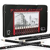 Lápices de dibujo profesionales, EooUooIP 12 lápices de dibujo Juego de lápices de dibujo 8B -2H, lápiz de arte perfecto para artistas, principiantes, estudiantes, diseñadores