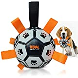 Balón de fútbol interactivo flotante Royal Pets House Dog con lengüetas de nailon | Ideal para juegos de Water Dogs | Mejor juguete de verano para mascotas para interiores y exteriores 2021