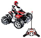 Xtrem Raiders- Desert Squad Motocicleta (World Brands XT180765)